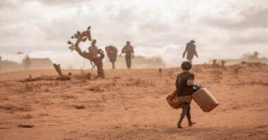 ONU advierte sobre aumento del hambre y la subalimentación